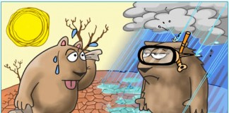 Climate Change in India